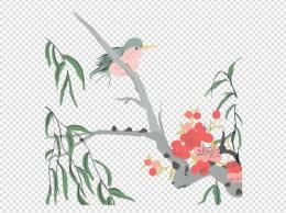 手绘的啄木鸟插画