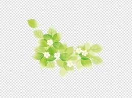绿叶信笺花边
