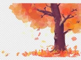 秋季秋天节气季节秋日大树红叶落