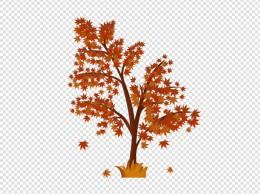 手绘卡通秋天红色枫叶树